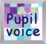 pupil-voice-new-logo-small1